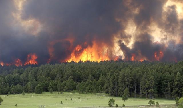 4302-black-forest-fire-colorado